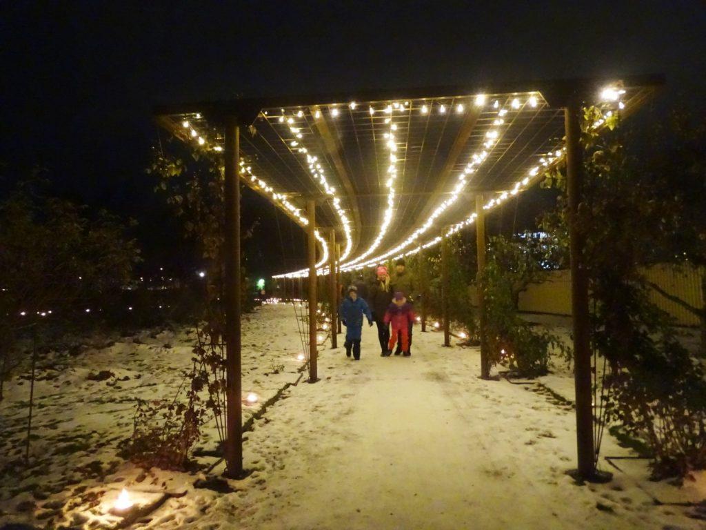stadsparken-ljus2-2