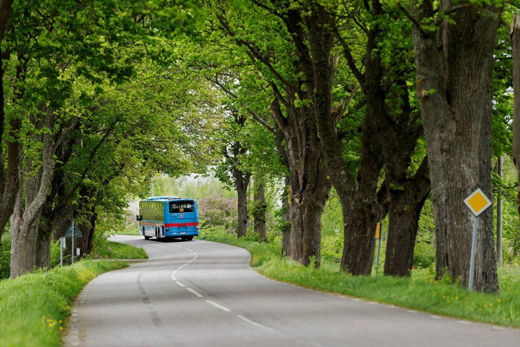 buss-sommarbiljett