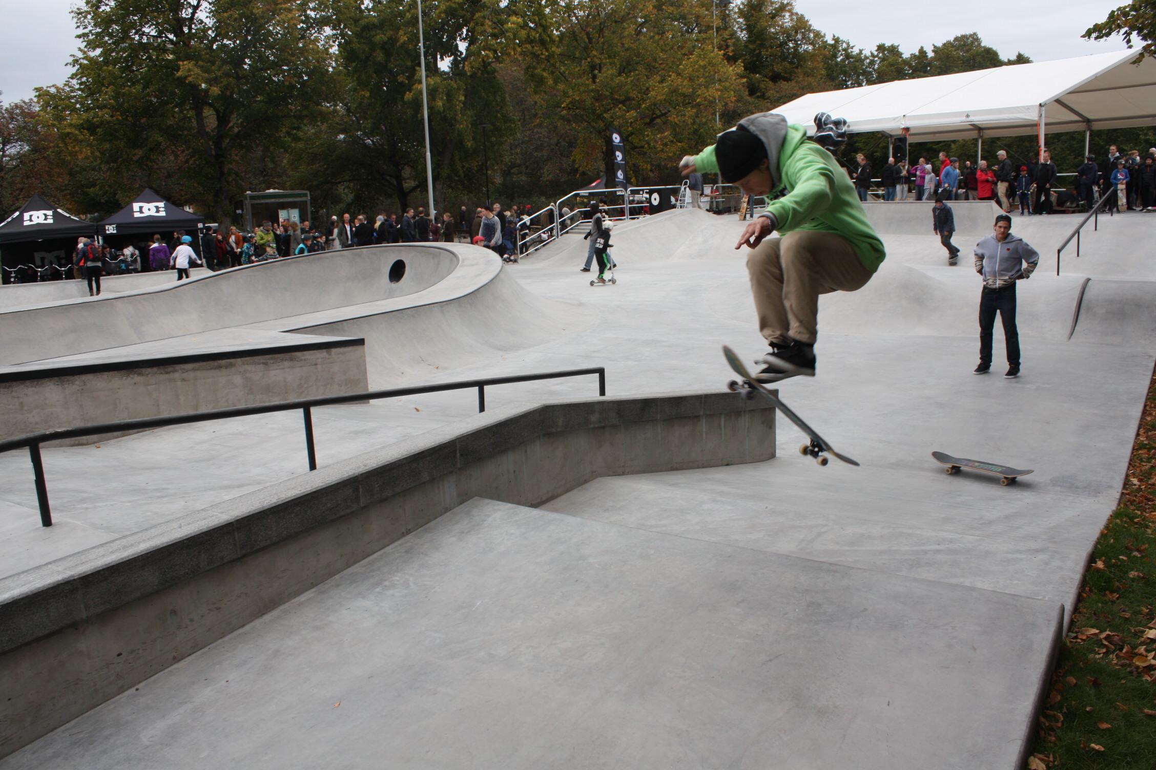 skate-millencolin